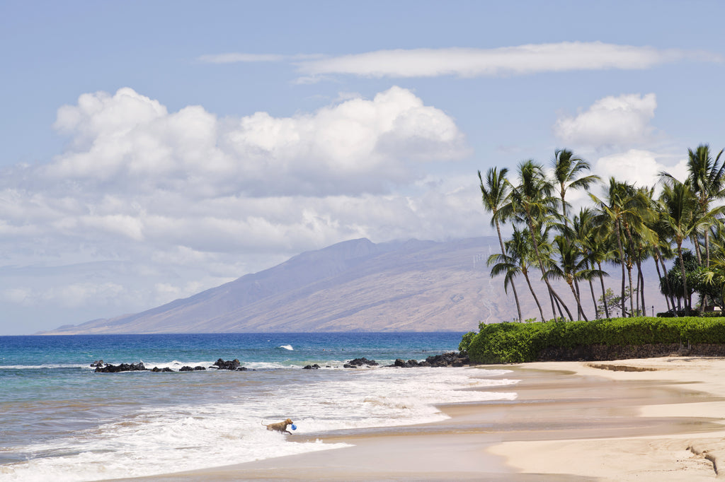 White Rock Beach | South Maui | Hawaii Beach Weddings & Elopements | Married with Aloha, LLC