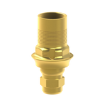 Xive® compatible interface abutments