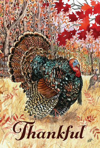Wild Turkey Garden Flag
