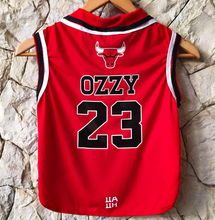 Camiseta Regata Basquete Chicago Bulls para Pets