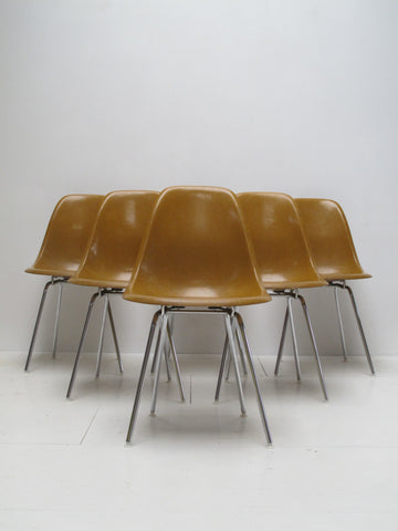 chaises chairs vintage Charles Ray Eames Herman Miller fiberglass fibre de verre Mobilier International caramel ochre midcentury lot DSX perriand
