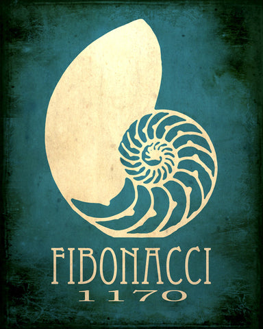Fibonacci Art Print - Mathematics