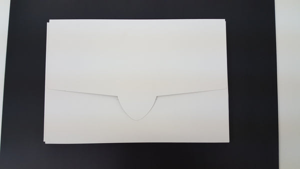 Portfolio, Drawing Art, Cardstock Envelope (12  x 18 in)