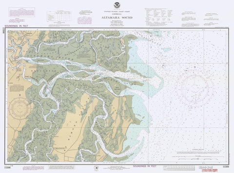 Altamaha Sound Map 1988