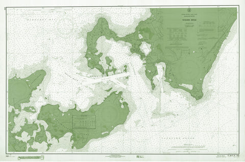 Woods Hole Passage Chart (1966) - green