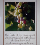 "Bookmark - ""Fruits of the Spirit"" Quote"