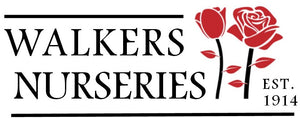 Walkers Nurseries - Wholesale Roses Online