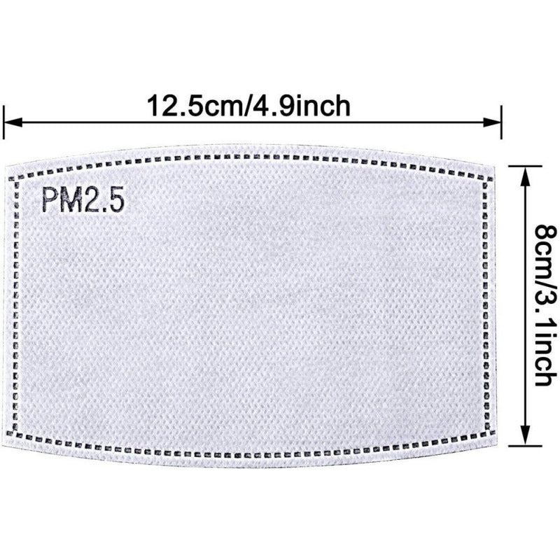 PM2.5 filter sheet/ cloth mask insert