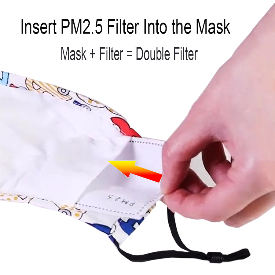 insert PM2.5 filter into reusable mouth mask with valve N95