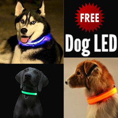 FREE Dog & Cat LED Collar
