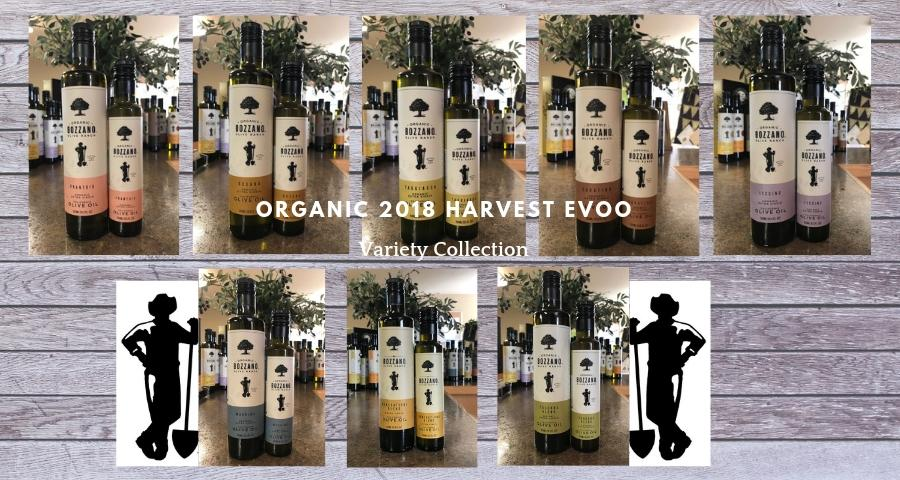 Bozzano Olive Ranch Organic California Extra Virgin Olive Oil