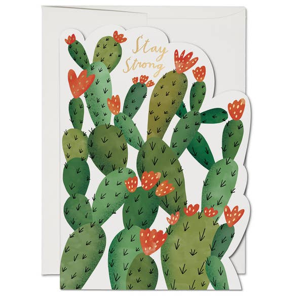 Stay Strong Cactus Card-Picnic-sf