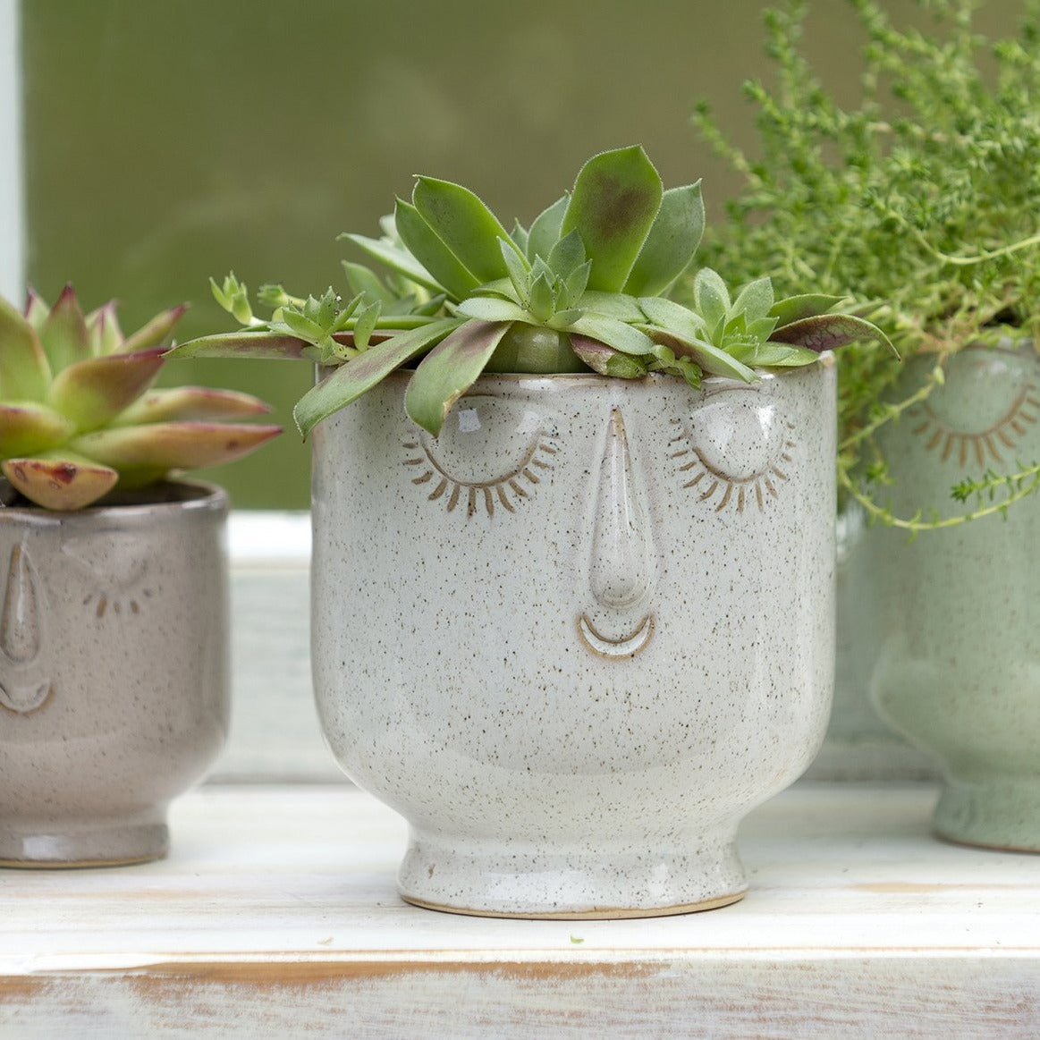 Friendly Face Planter Pot