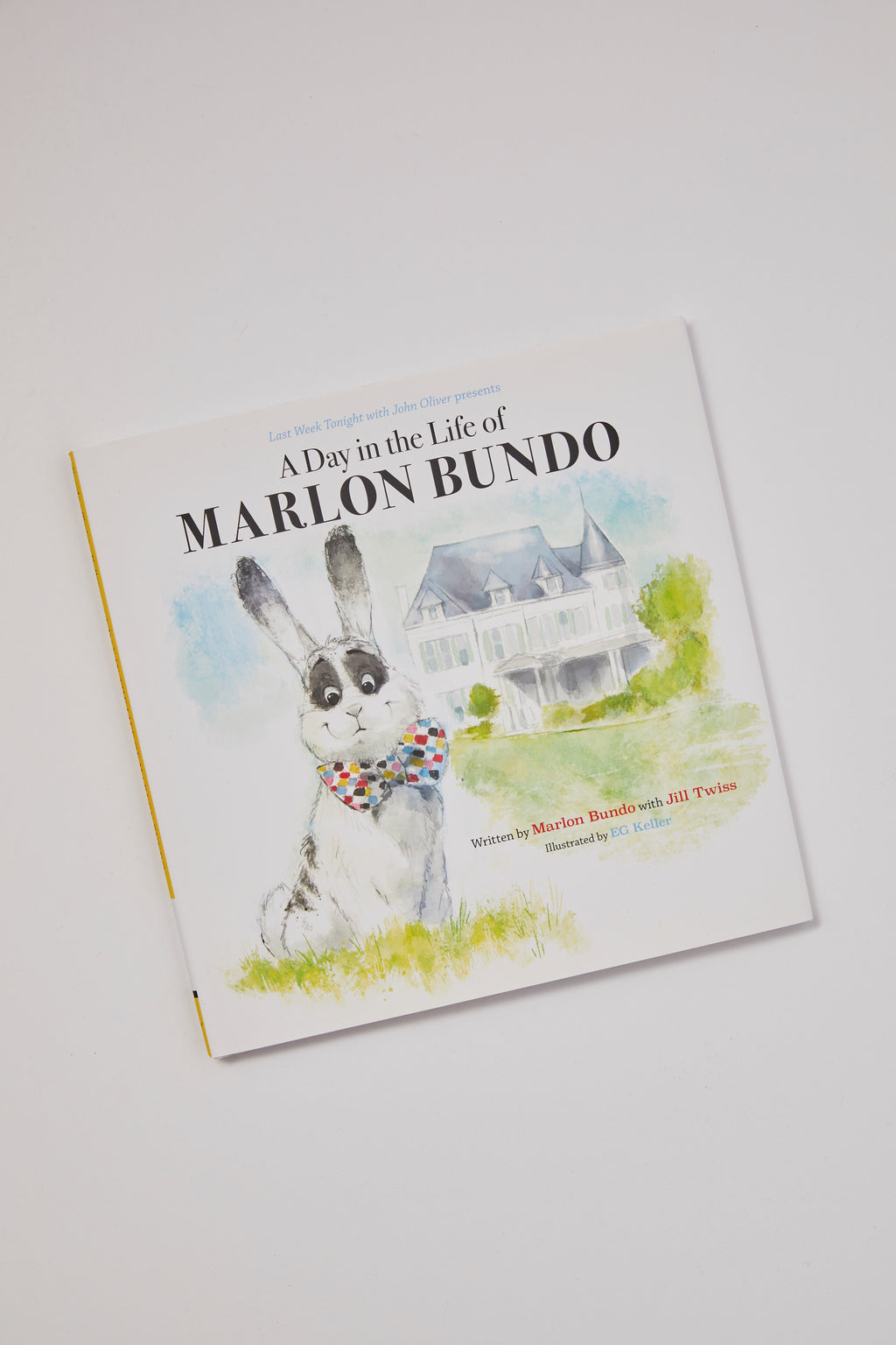 A Day in The Life of Marlon Bundo - P I C N I C