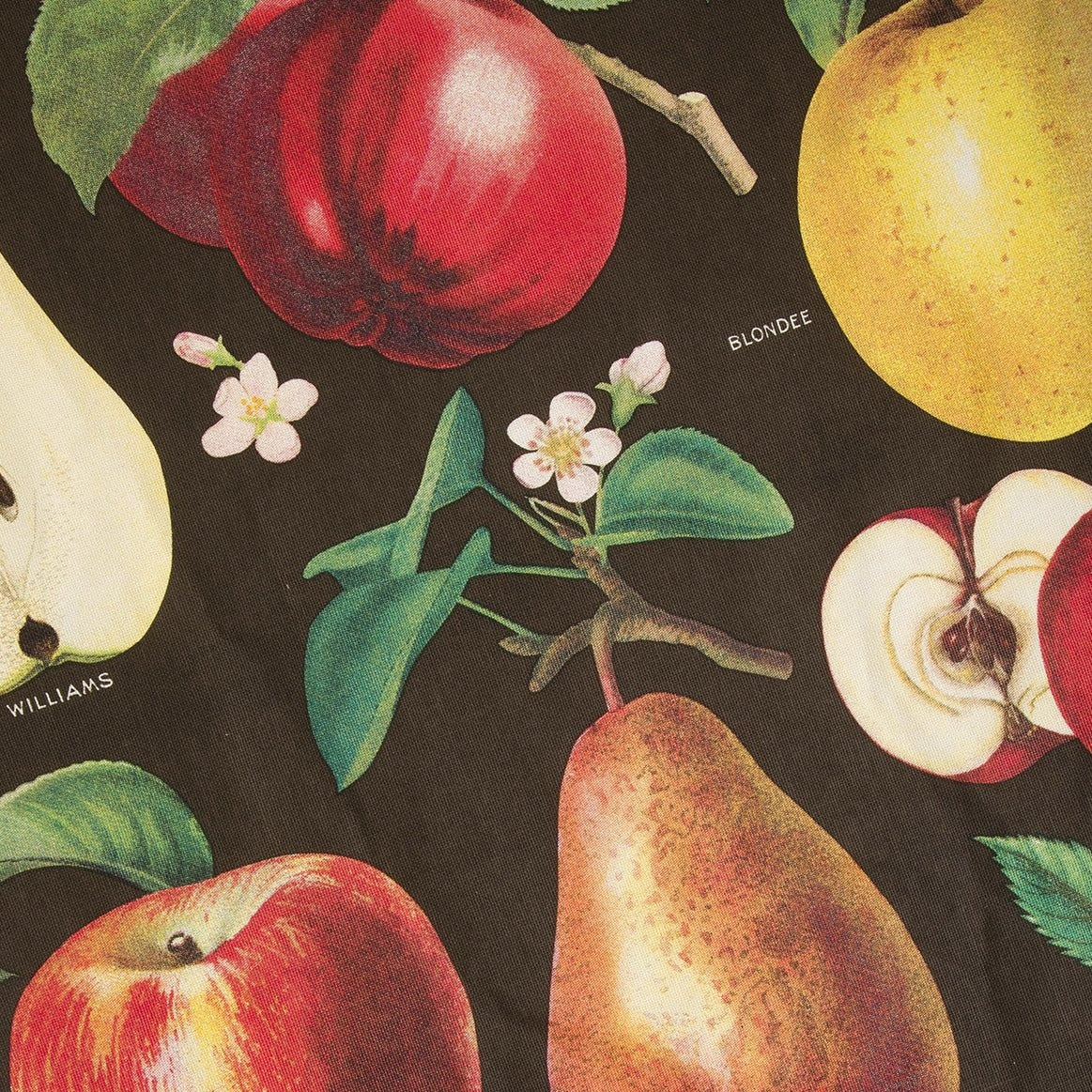 Apples and Pears Tea Towel - Picnic SF
