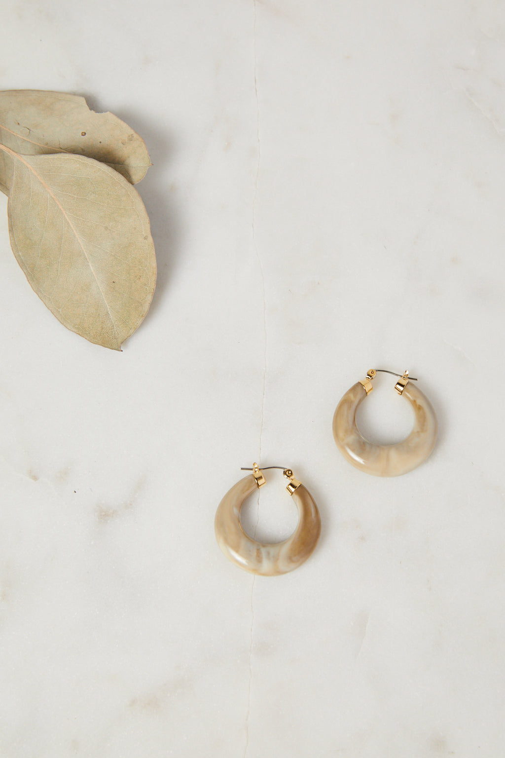 Beige Acetate Hoop Earrings - picnic-sf