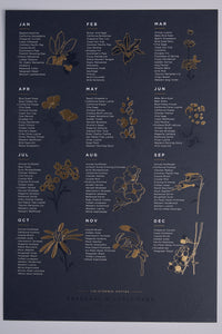 Premium Edition Ebony Seasonal Wildflower Poster - picnic-sf