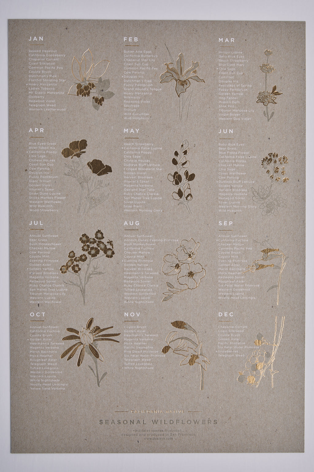 Seasonal Wildflower Poster - picnic-sf