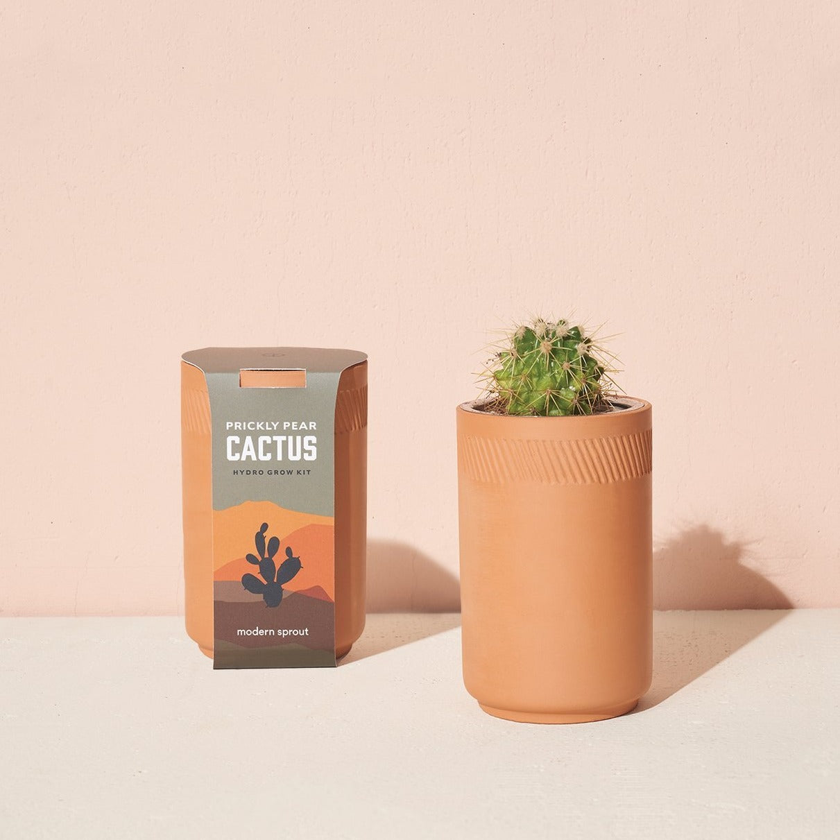 Terracotta Prickly Pear Cactus Grow Kit-Picnic-sf