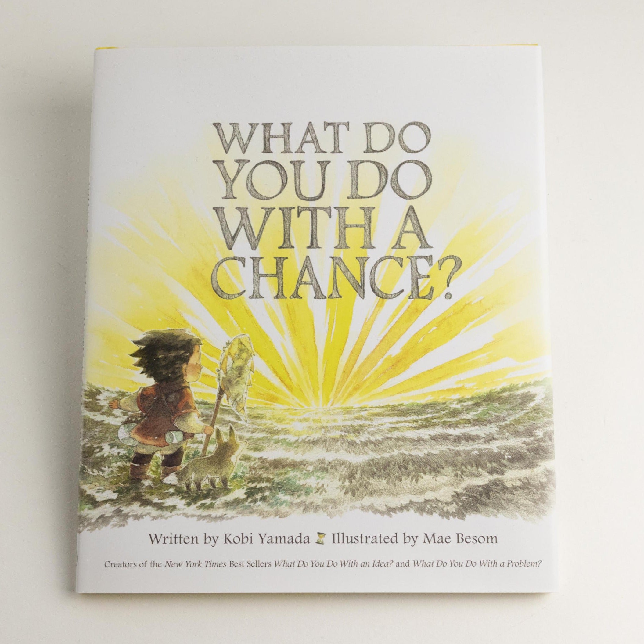 What Do You Do With A Chance Kid Book -Picnic-sf