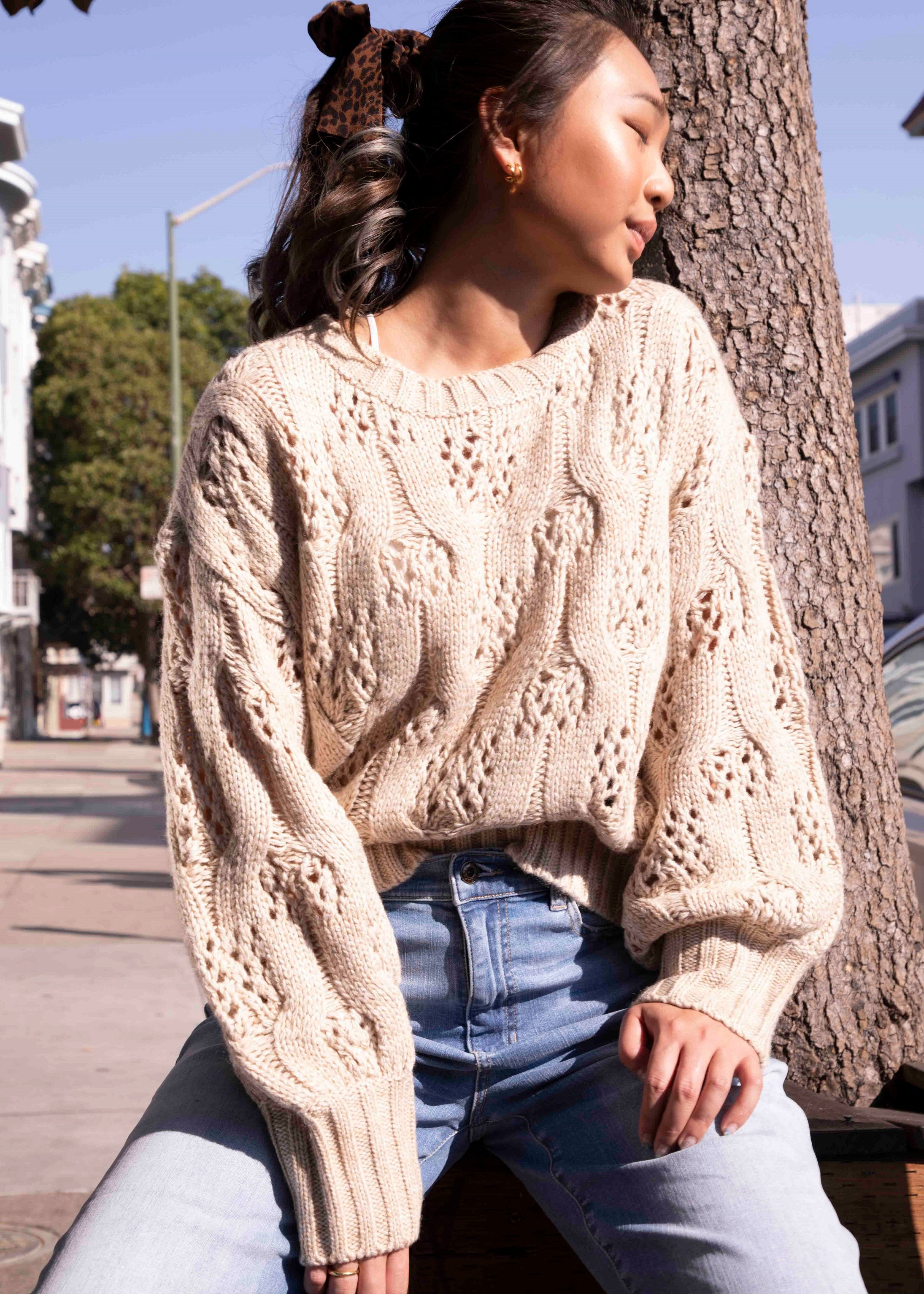 Oversized Cable & Pointelle Sweater-Picnic-sf