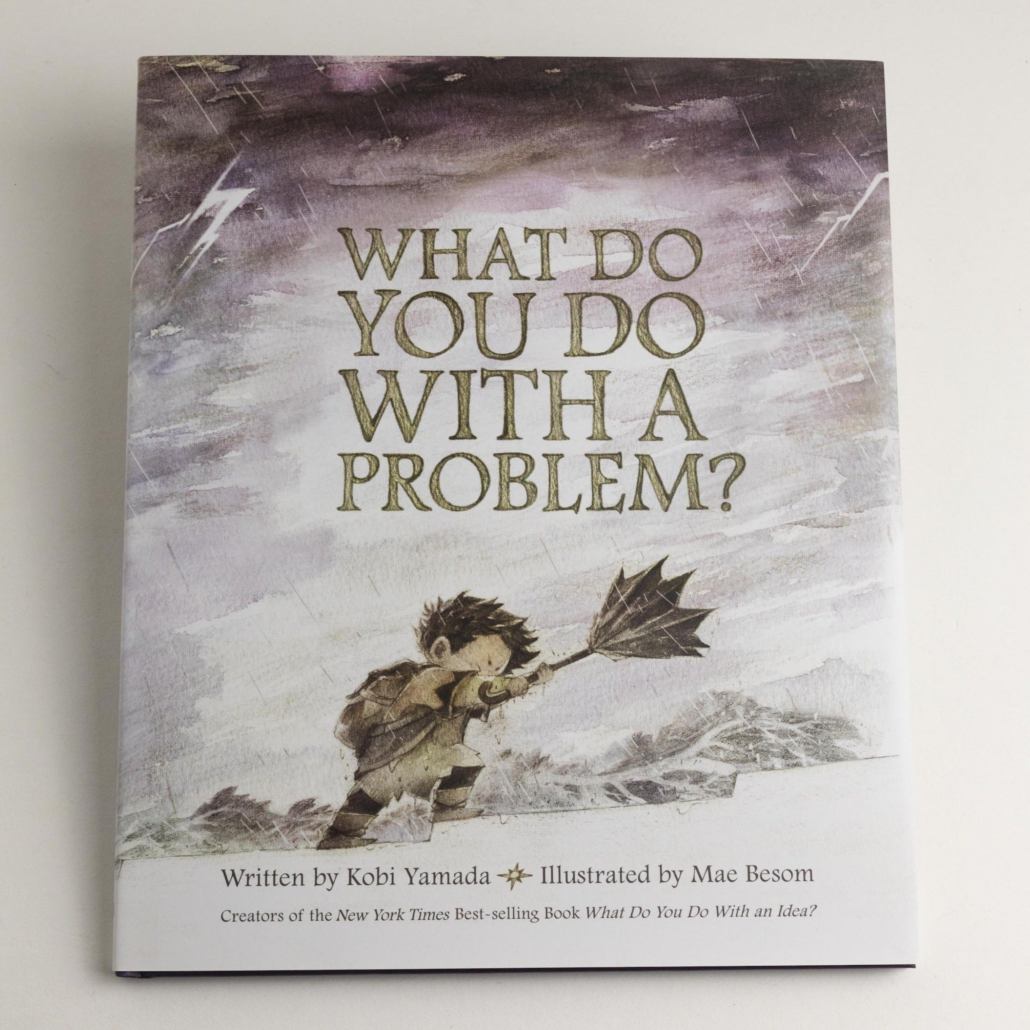 What Do You Do With A Problem Kid Book -Picnic-sf