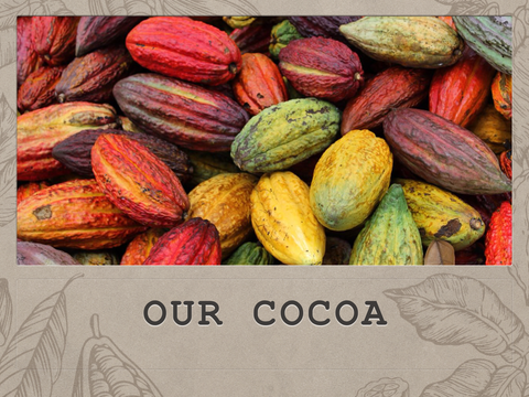 Our Cocoa