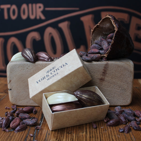 Fruity Chocolate Cocoa Pods Mini Gift Box - Vegan Friendly