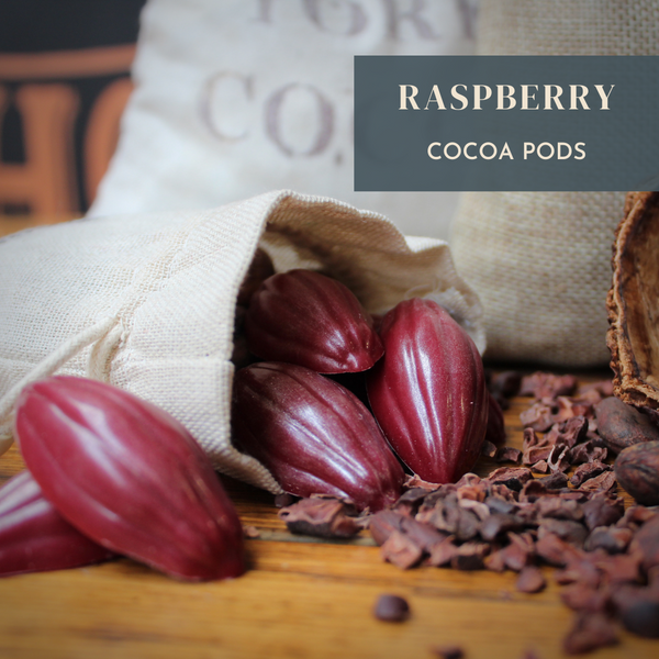 Raspberry Sparkling Cocoa Pods 100g