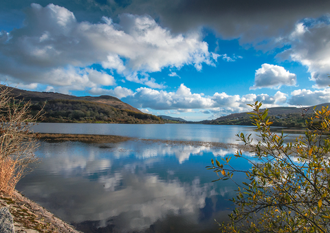 Camlough Lake Reflections