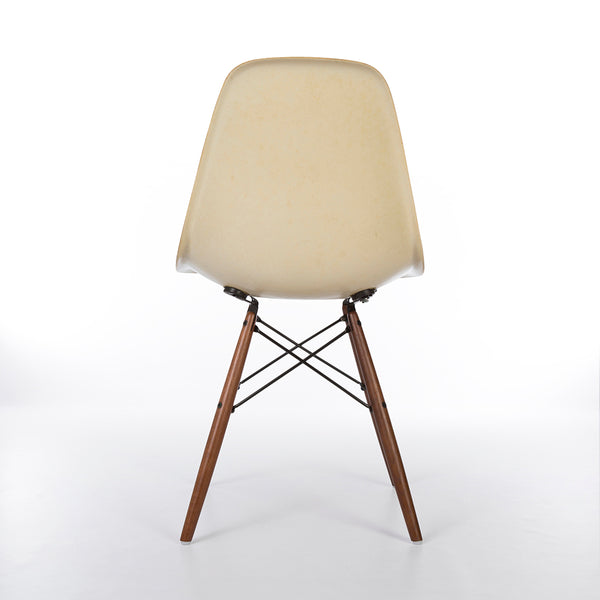 Rear image of Parchment Eames DSW Dining Side Chair