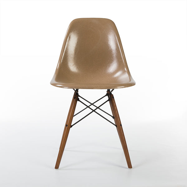 front view of Tan set (4) Herman Miller Original Eames DSW Dining Side Shell Chair