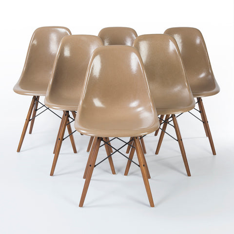 Tan set (6) Herman Miller Original Eames DSW Dining Side Shell Chair