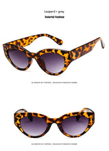 Oversized Sunglasses, Leopard | Kitsch Kandy Clothing - Tomboy Styles
