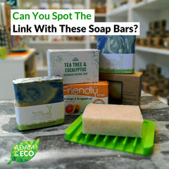 Do Soap Bars Collect Germs? | Adam & Eco