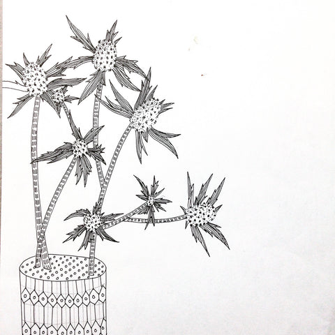 plant drawings