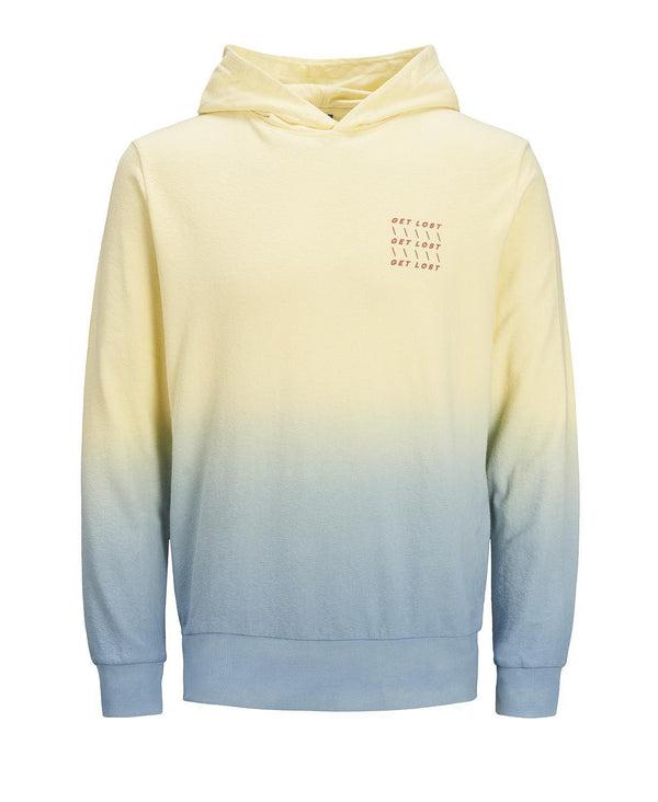 Jack & Jones JORBURN SWEAT HOOD