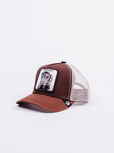 Gorra Goorin Bros Good Boy Marrón Perro
