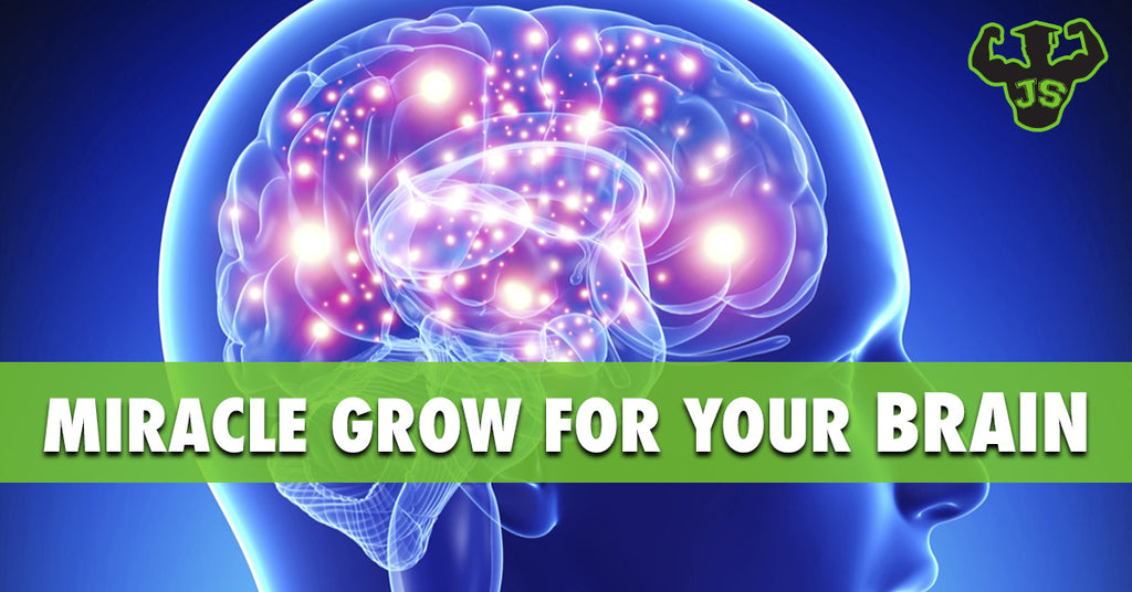 BDNF: Miracle Grow For Your Brain