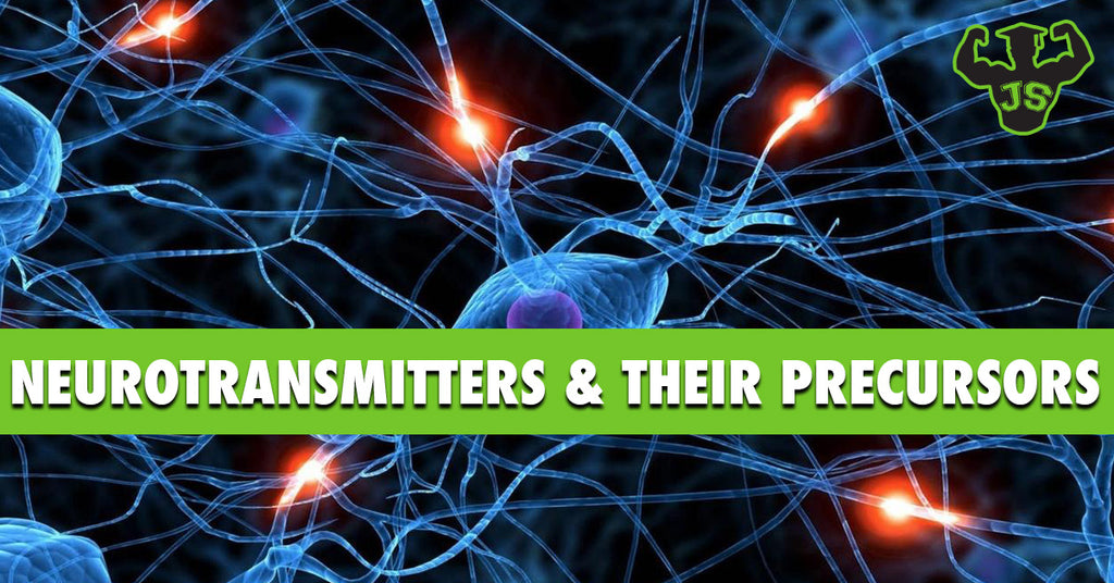 Neurotransmitters and the Precursors That Make Them