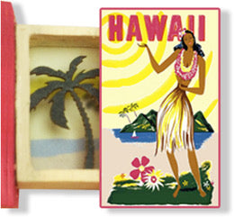 Itsy Bitsy Teeny Weeny Secret Book - Hawaii