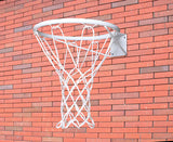 Netball ring with net