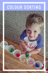 Early Learning Colour Sorting Activity