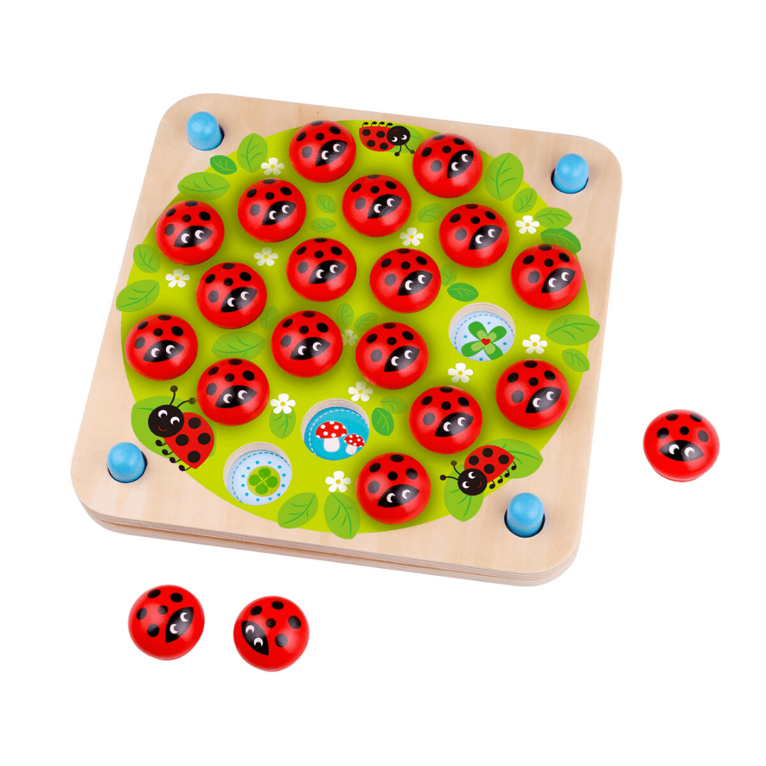 Ladybird Memory Game with Cards