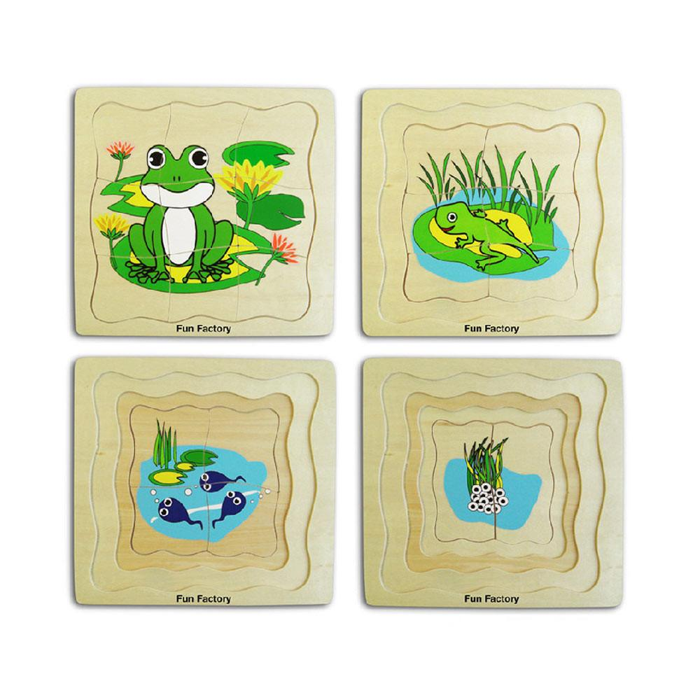 Wooden Frog Lifecycle Puzzle - 4 layer