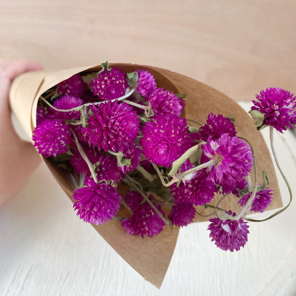 Dried flowers - bunch of Gomphrena