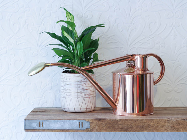 Haws 1L Copper Watering Can