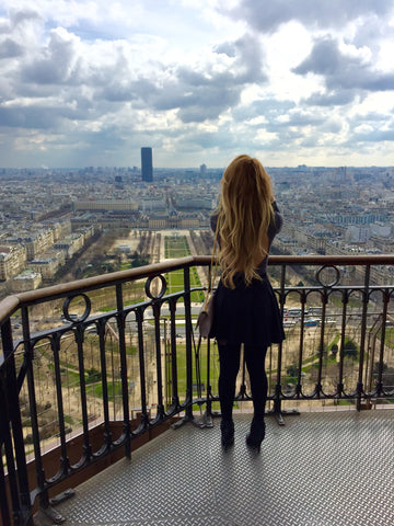 A beautiful view of Paris.