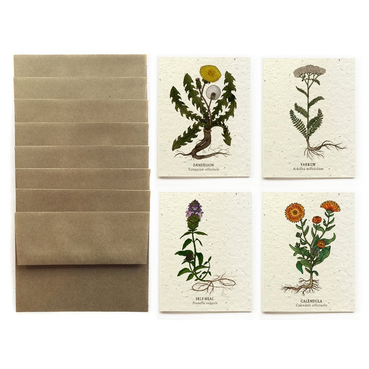 Bower Studio Seed Cards - Gift Set of 8