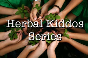 Herbal Kiddos Session 2: School age kids